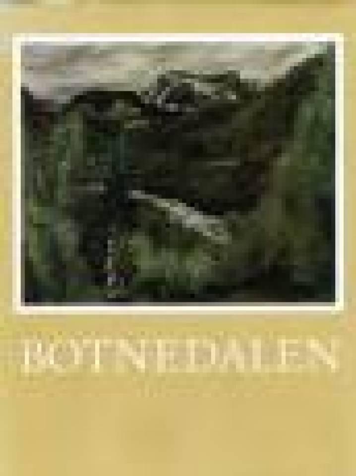 Botnedalen