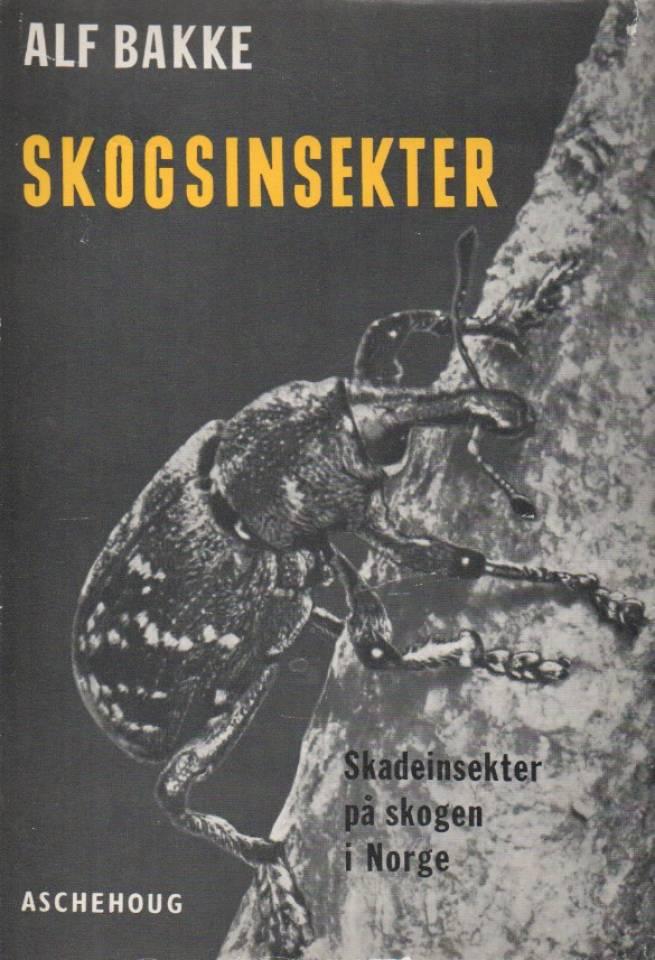 Skogsinsekter – skadeinsekter på skogen i Norge