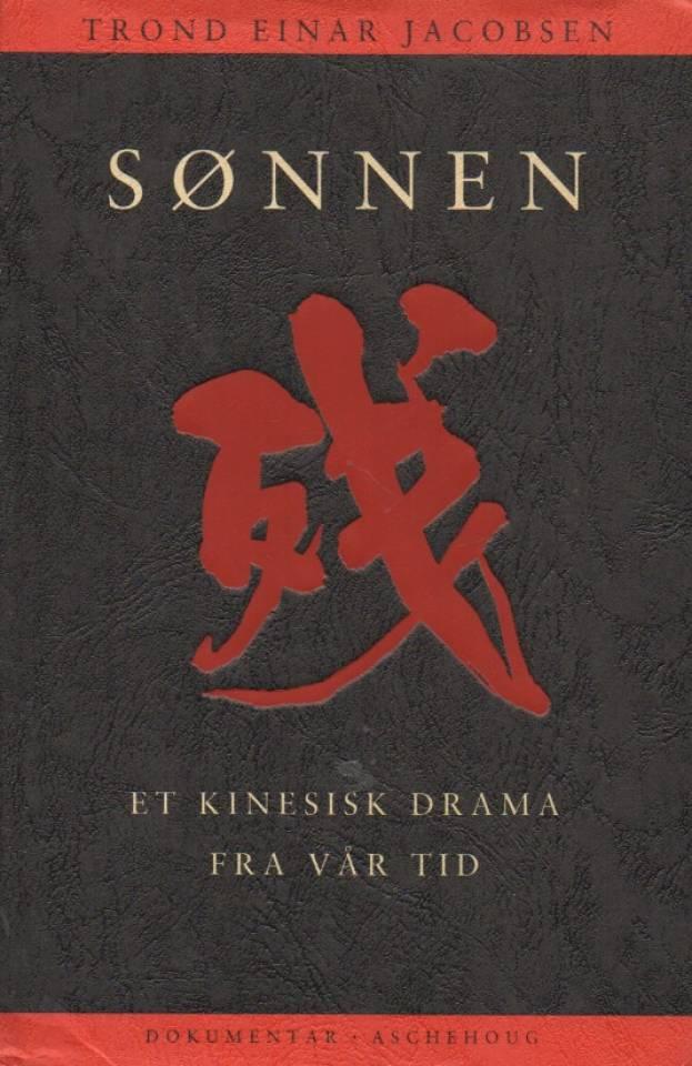 Sønnen – Et kinesisk drama fra vår tid