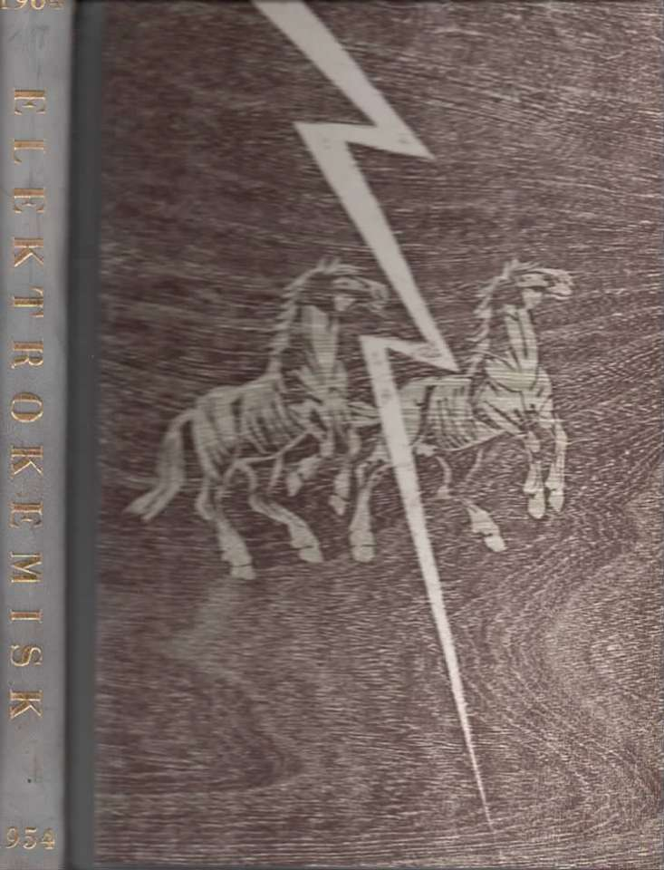 Elektrokemisk 1904-1954