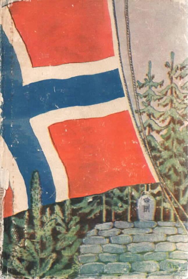 Norsk soldatbok