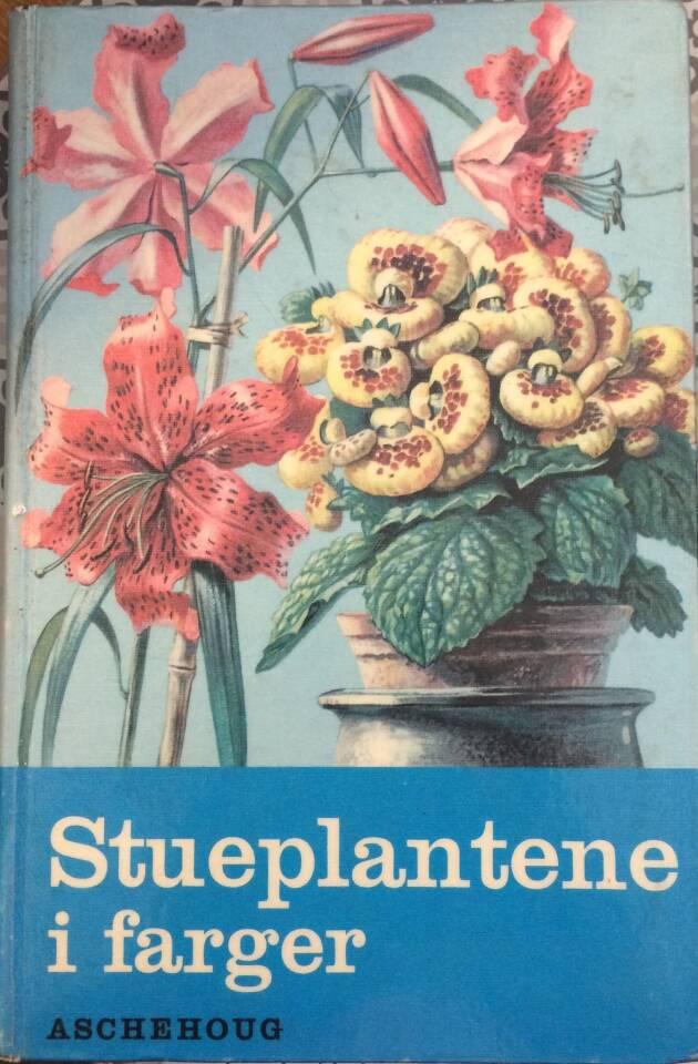 Stueplantene i farger