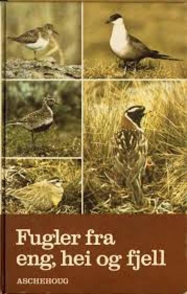 Fugler fra eng, hei og fjell