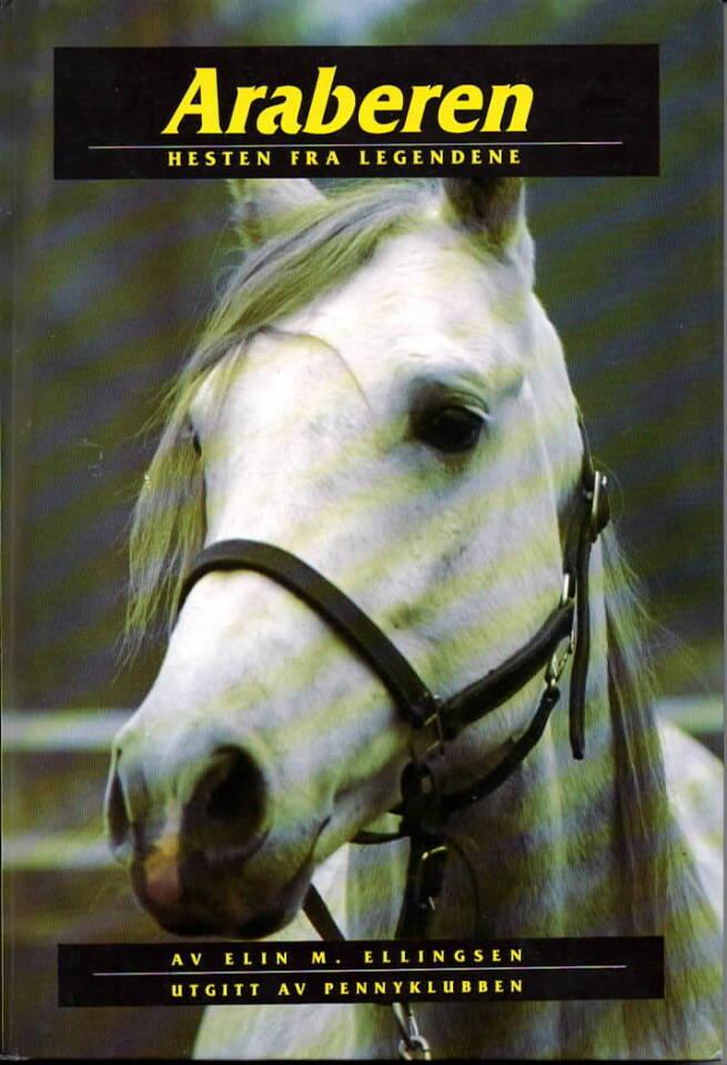 Araberen – Hesten fra legendene