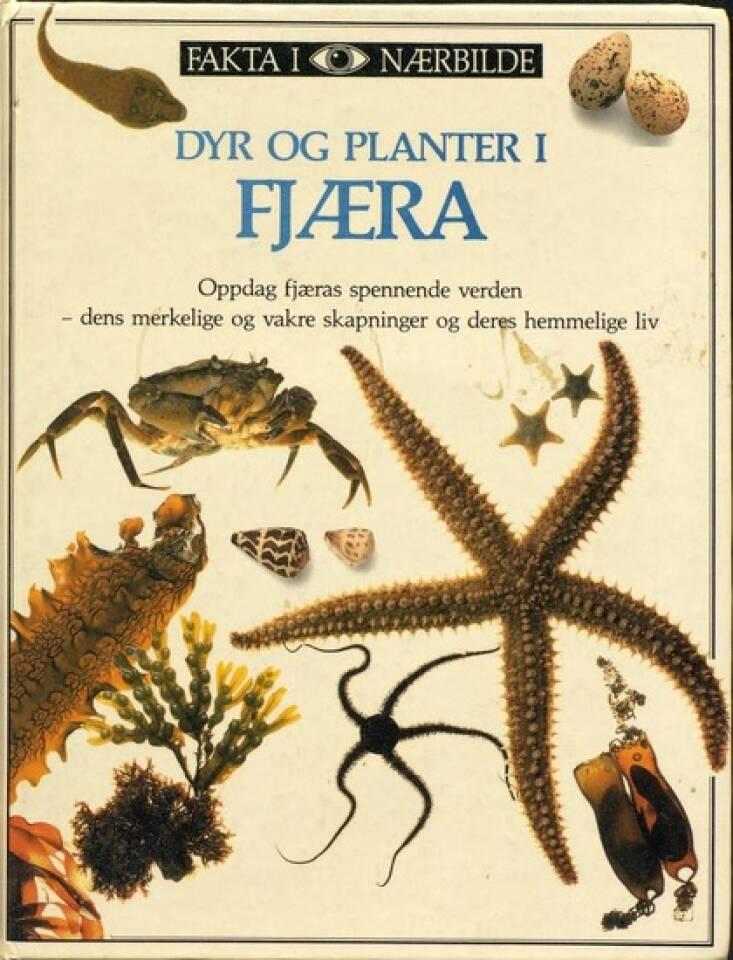 Dyr og planter i FJÆRA