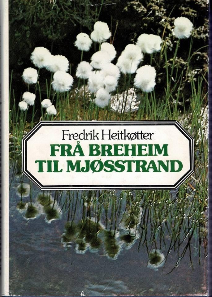 Fra Breheim til Mjøsstrand