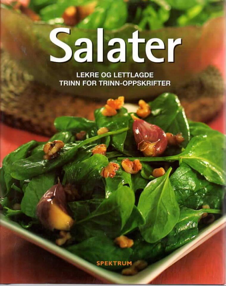 Salater – lekre og lettlagde trinn for trinn-oppskrifter