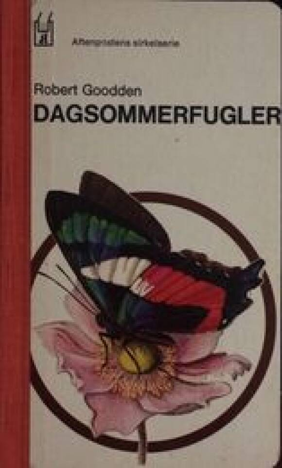 DAGSOMMERFUGLER