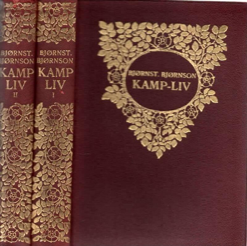 Kamp-liv -  Brev fra årene 1879-1884