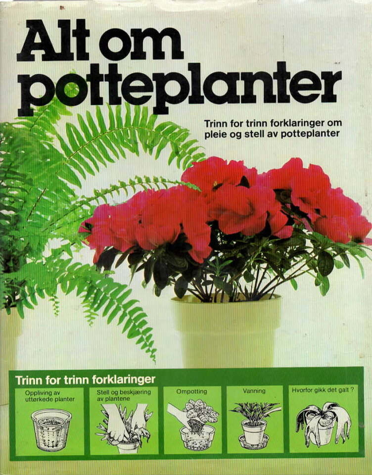 Alt om potteplanter