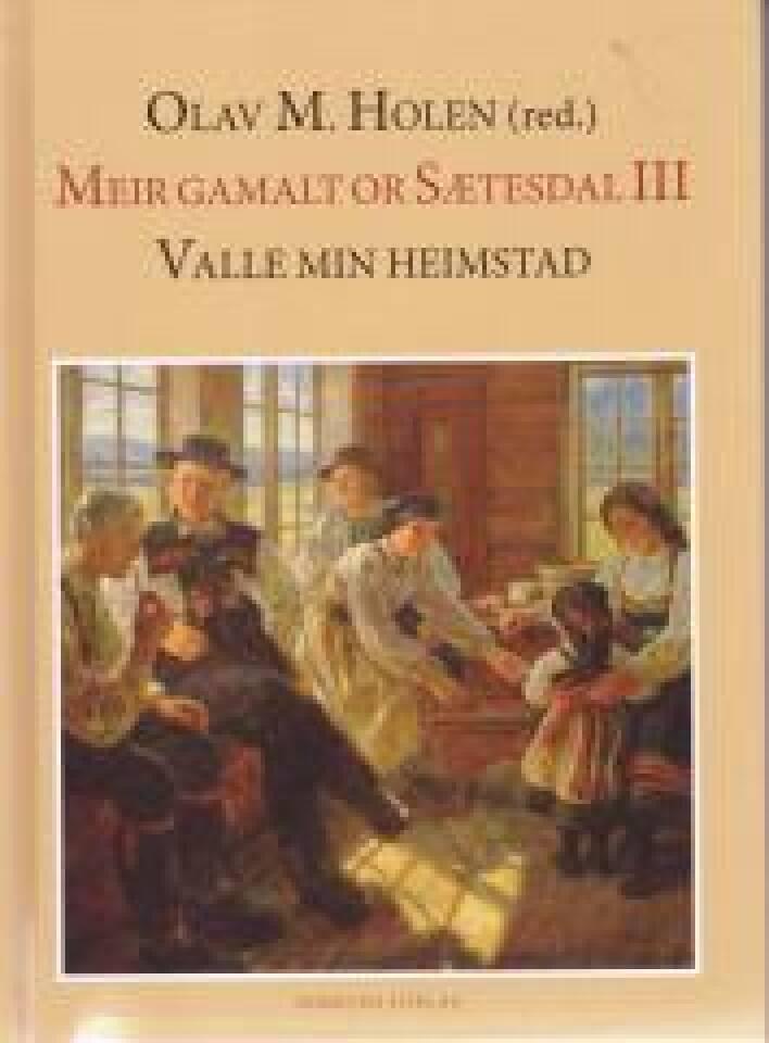 Meir Gamalt or Sætesdal III