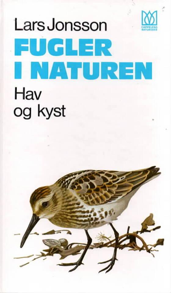 Fugler i naturen – hav og kyst