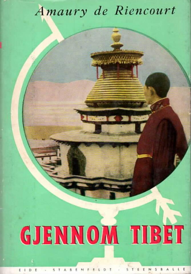 Gjennom Tibet