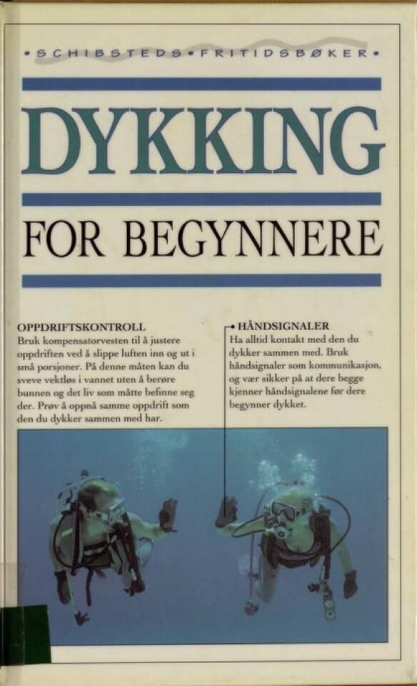 Dykking for begynnere