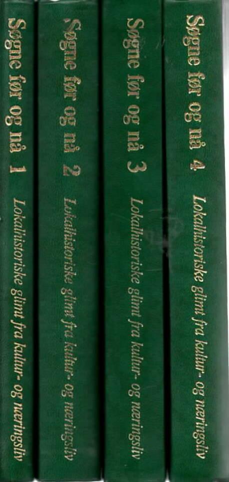 Søgne før og nå (bind 1-4)