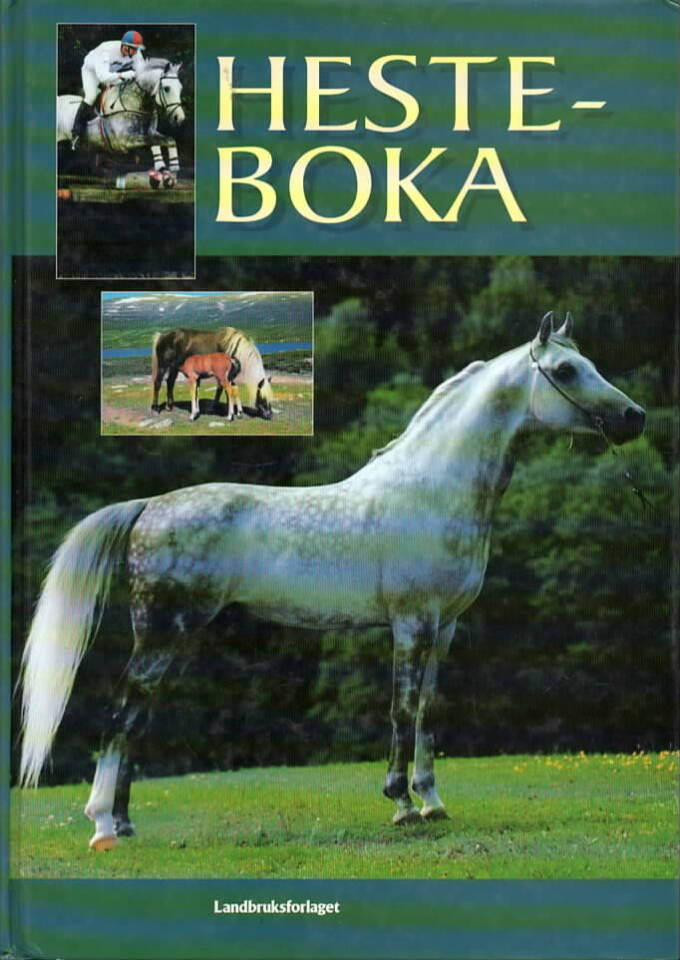 Hesteboka