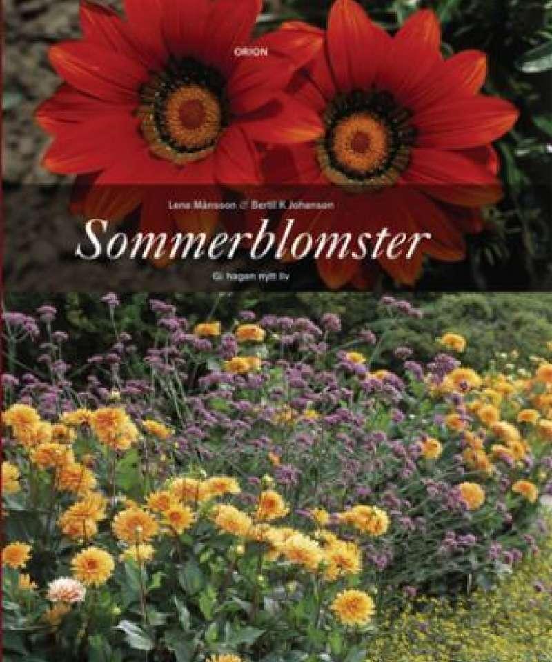 SOMMERBLOMSTER Gi hagen nytt liv