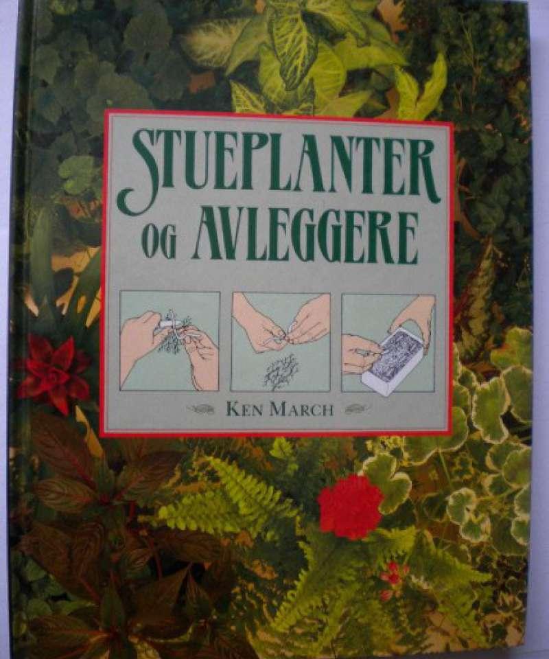 Stueplanter og avleggere