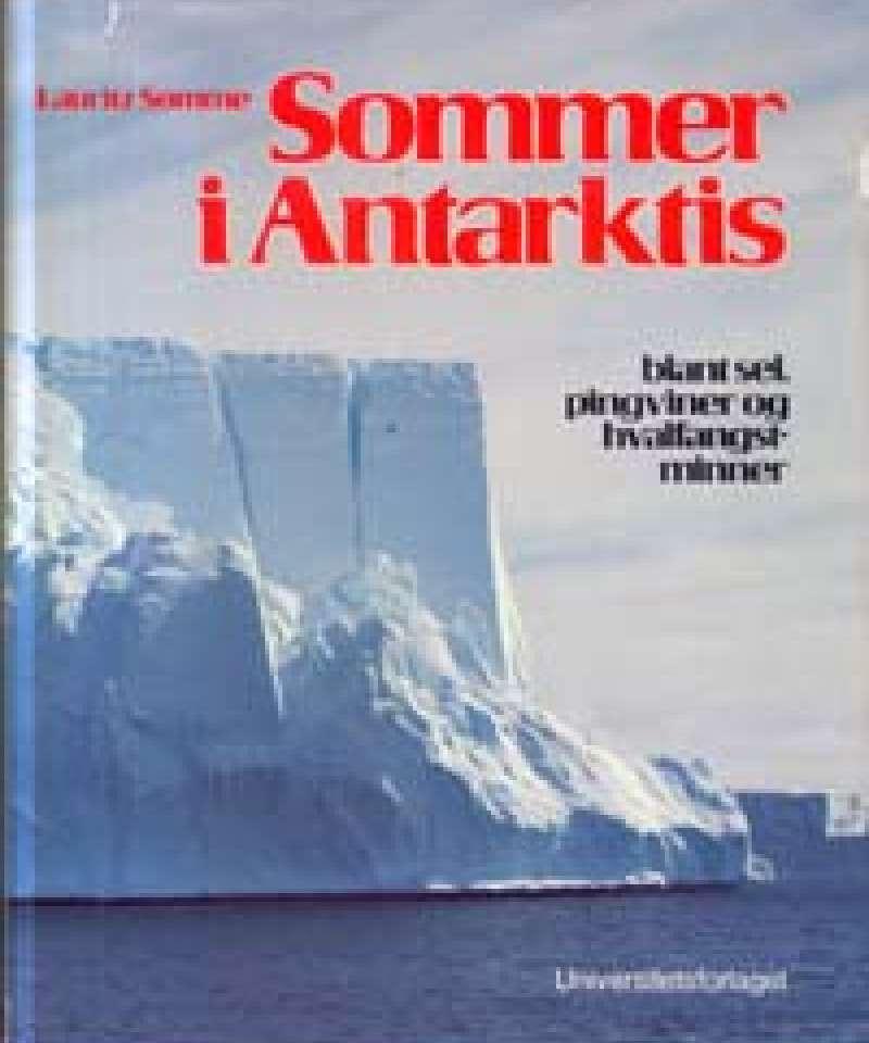 Sommer i Antarktis