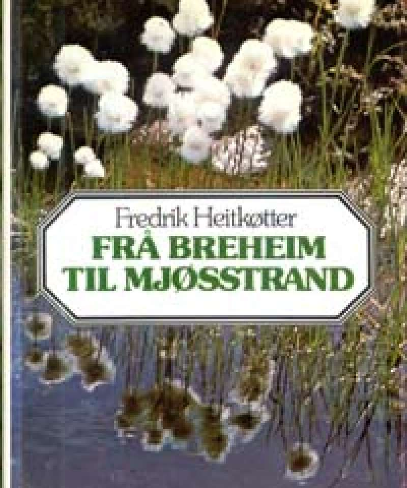 Frå breheim til Mjøsstrand