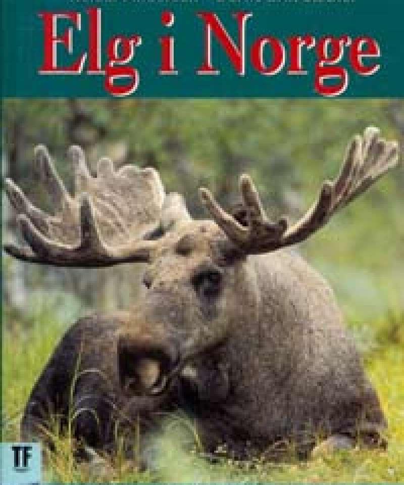 Elg i Norge
