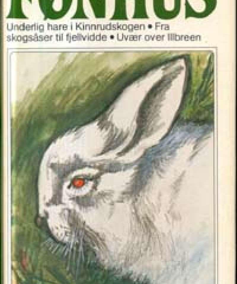Underlig hare i Kinnrudskogen - Fra skogsåser til fjellvidde - Uvær over Illbreen