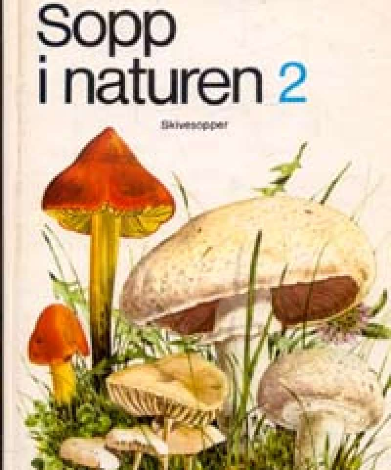Sopp i naturen 2
