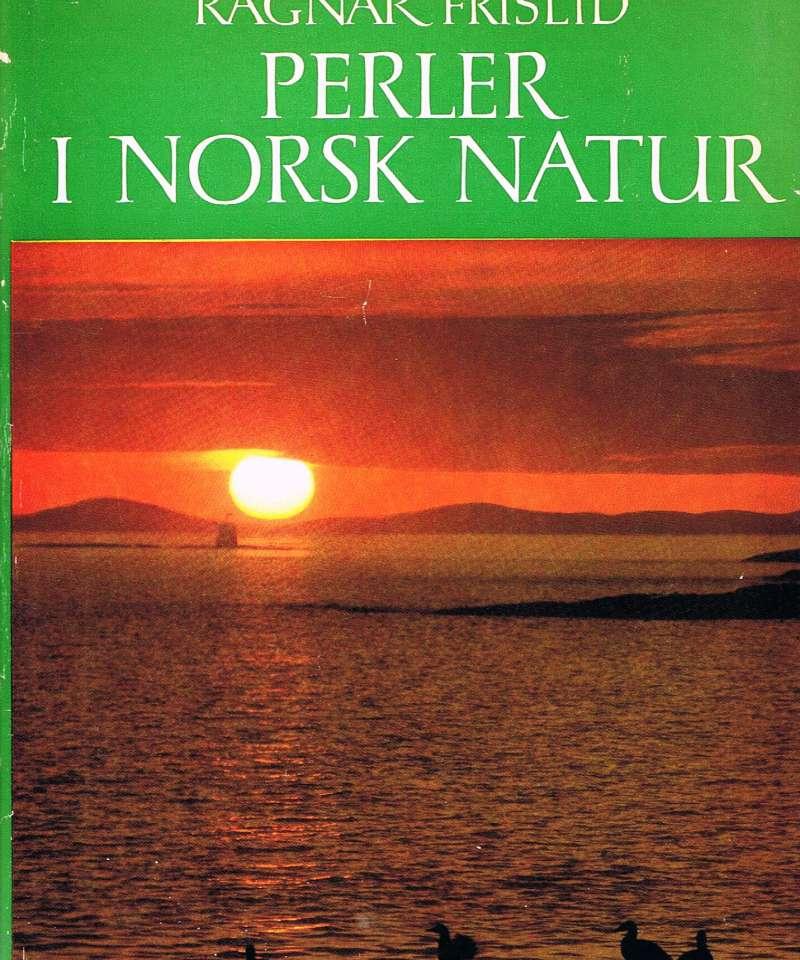 Perler i Norsk natur