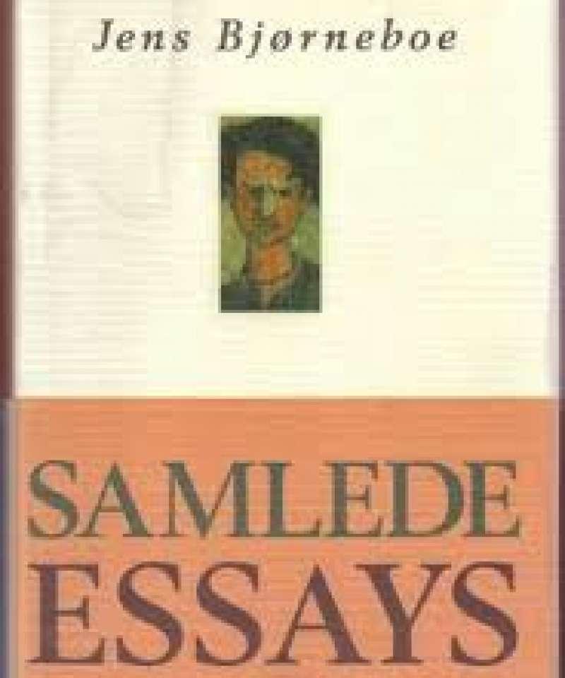 Samlede essays politikk