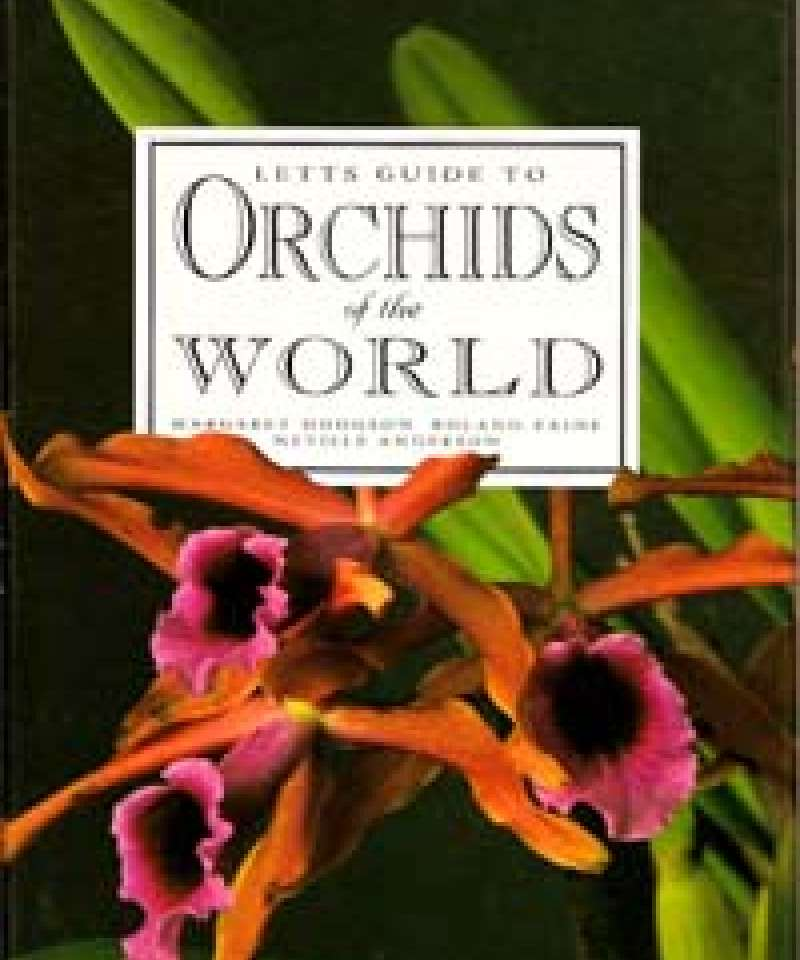Letts Guide to Orchids of the World