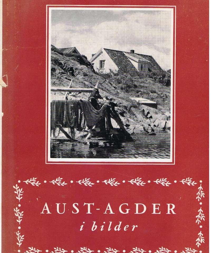Aust-Agder i bilder