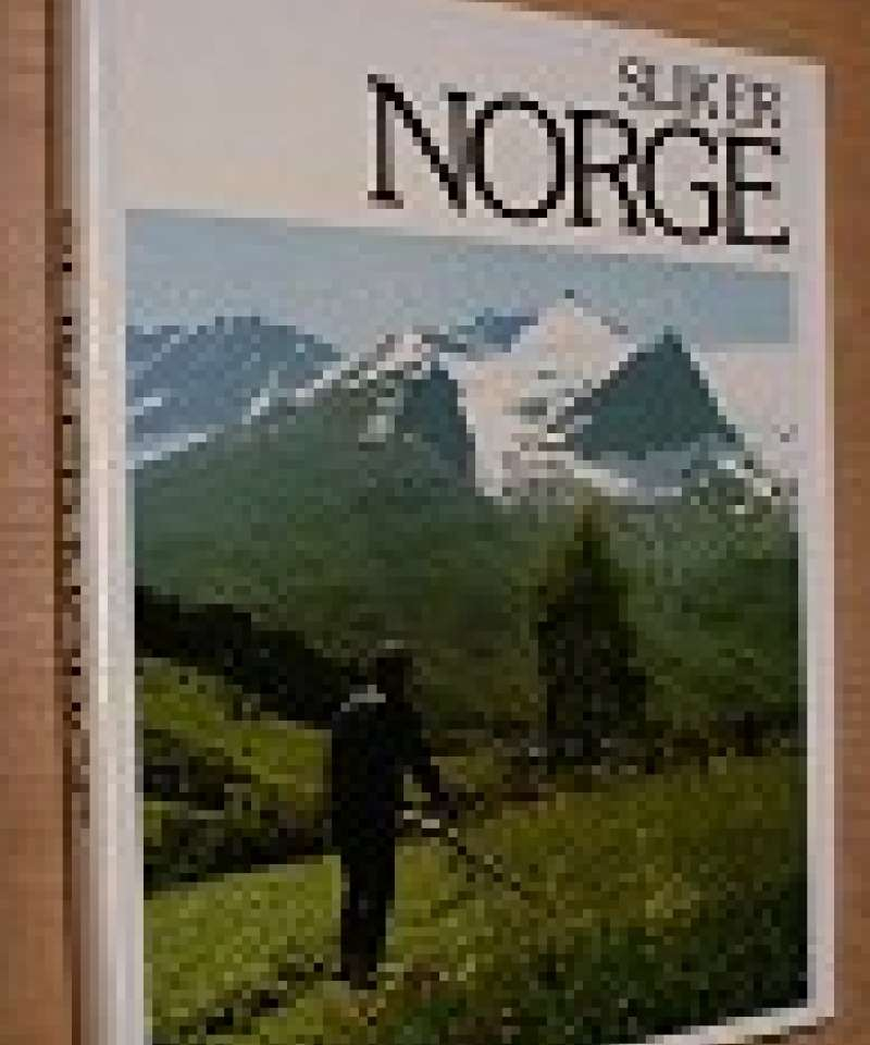 Slik er Norge