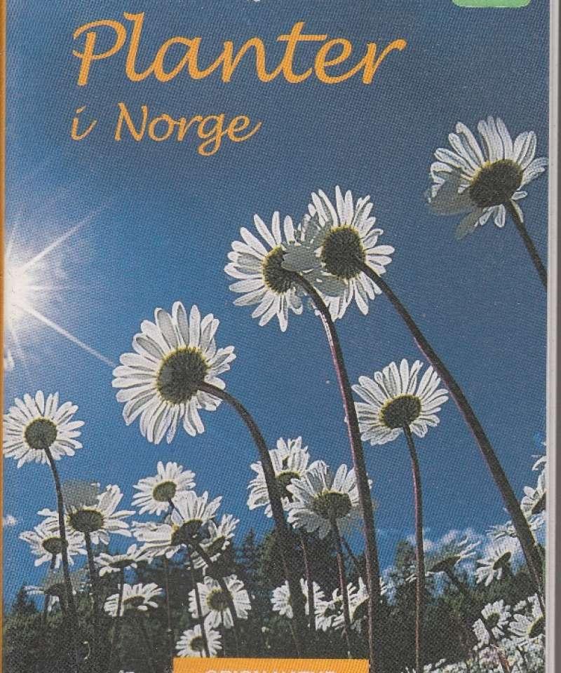 Planter i Norge
