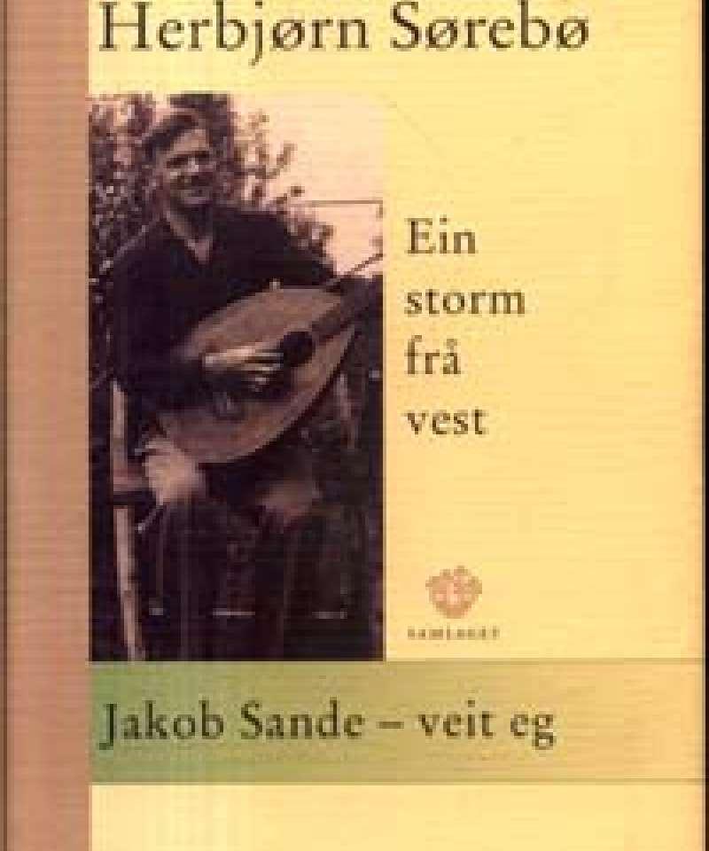 Ein storm frå vest