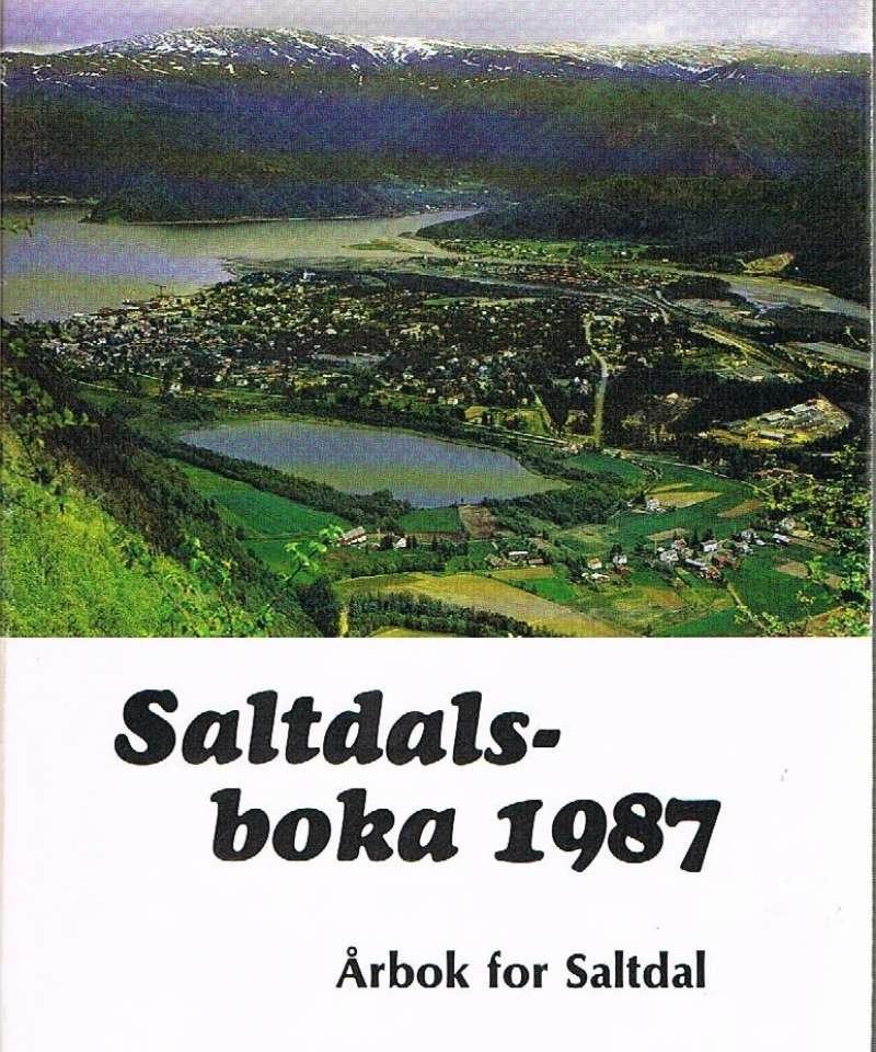 Saltdalsboka 1987