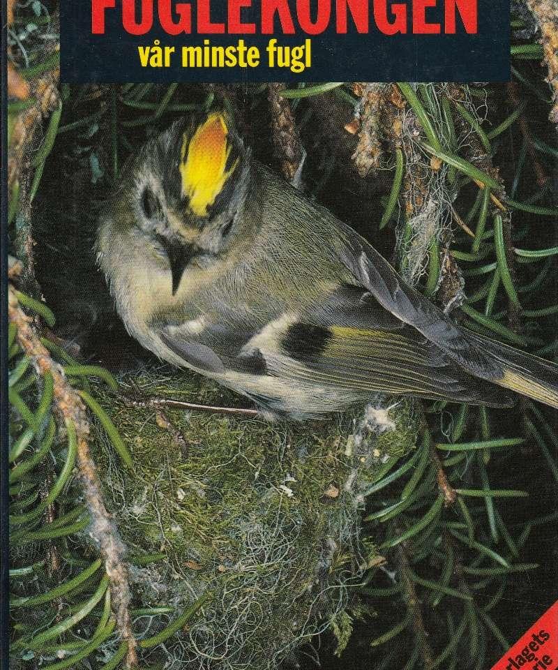 Fuglekongen - vår minste fugl
