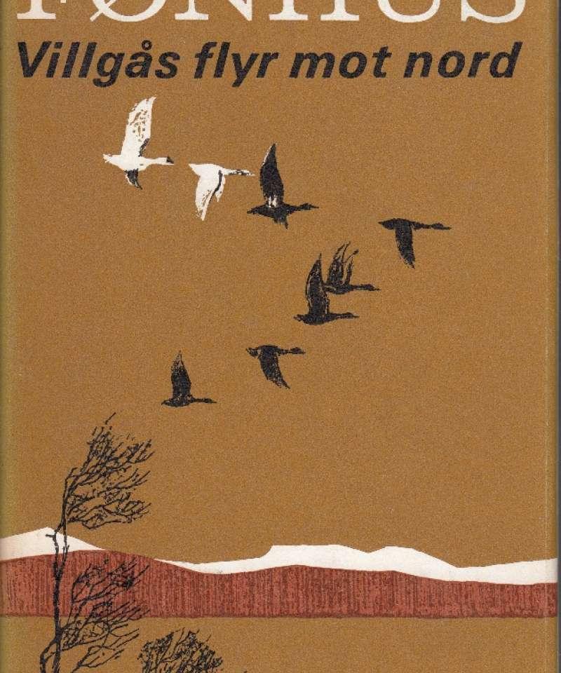 Villgås flyr mot nord