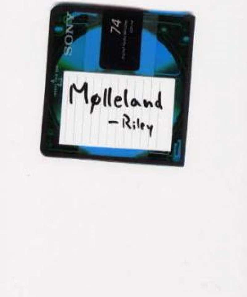 Mølleland