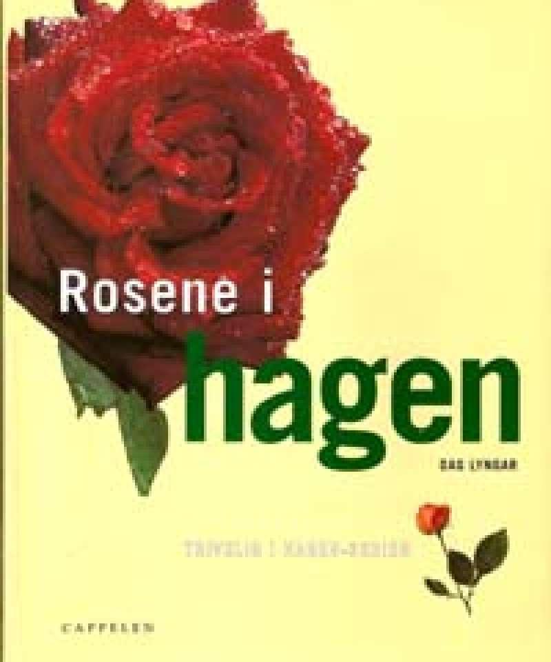 Rosene i hagen