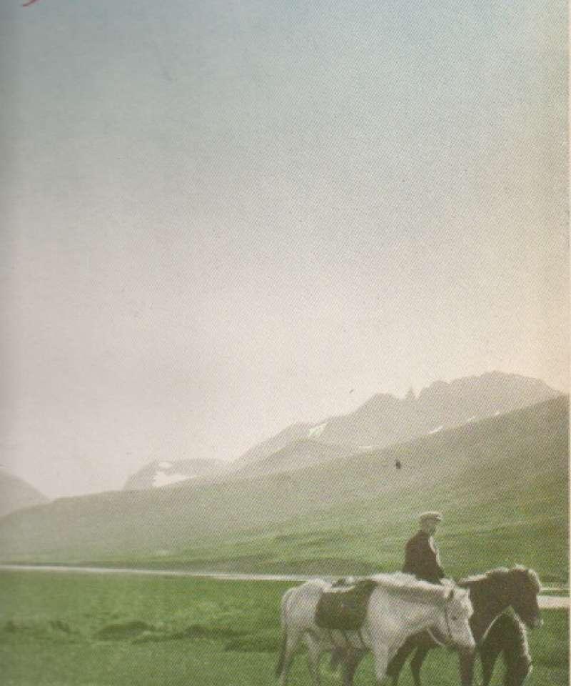 Paa Hesteryggen gjennom Island