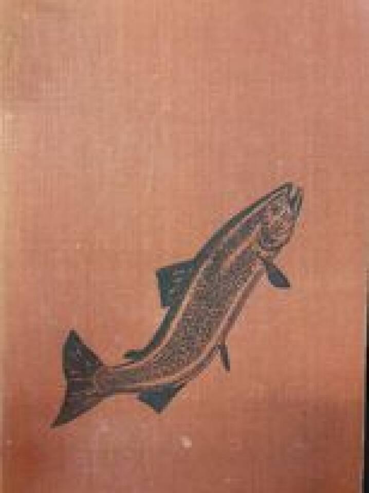 Ørretboka. ørretfiske, ferskvannsfiske, fiskekultur