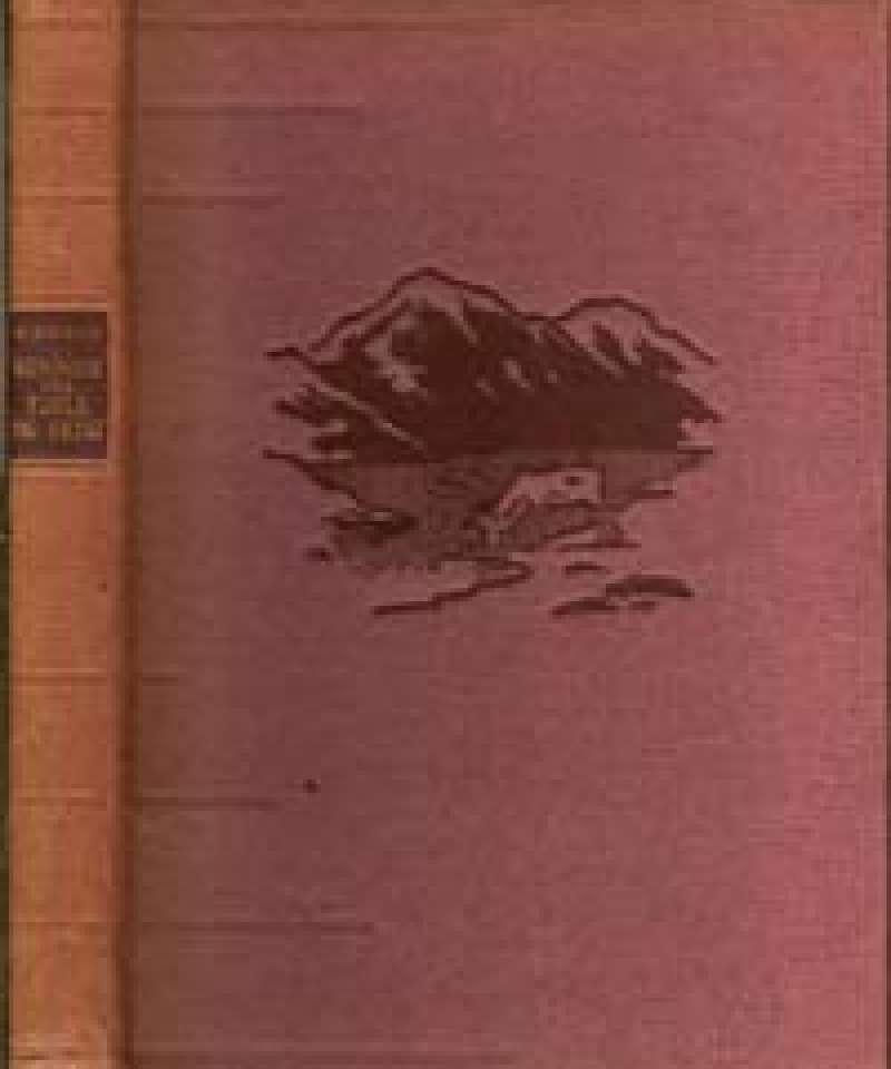 Minner fra fjell og skog