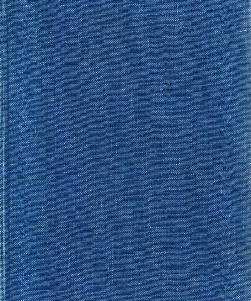 Den blå store viseboka