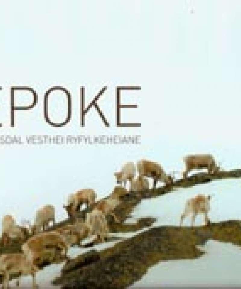 Epoke - Setesdal Vesthei Ryfylkeheiane