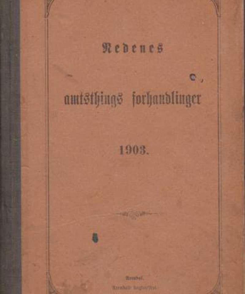 Nedenes amtsthings forhandlinger 1903