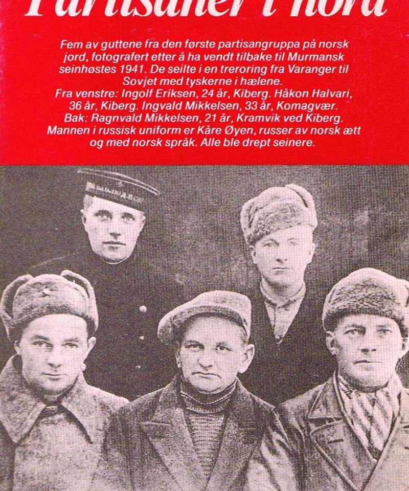 Partisaner i nord