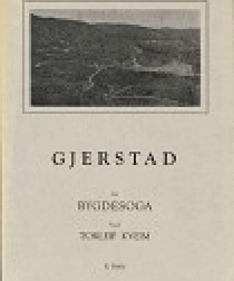 Gjerstad Bygdesoga II