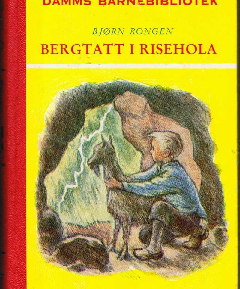 Bergtatt i Risehola
