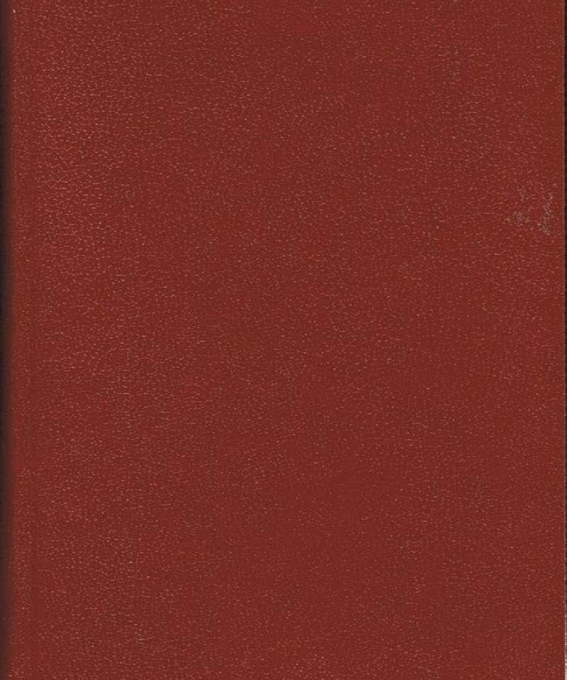 Ringsakeralmenningens historie bd. 2