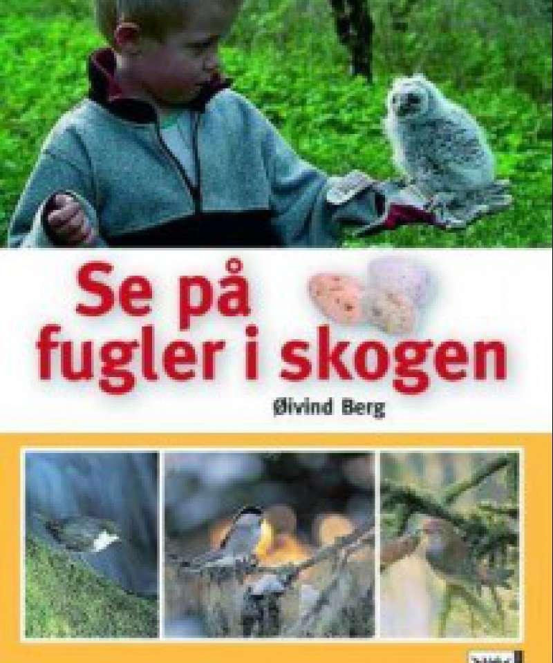 Se på fugler i skogen